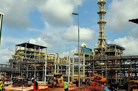 image 2 456x300 - US Expert Calls Lynas Plant One of the Safest in the World