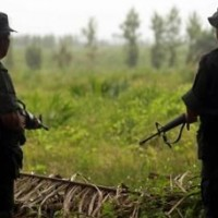 securityforces 200 200 - Fearless Villagers Beat Sulu Militant to Death